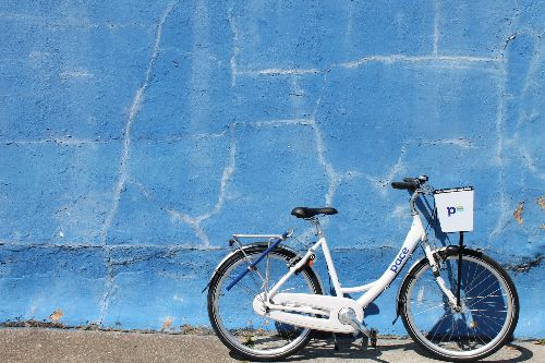 Pace Bike against blue wall